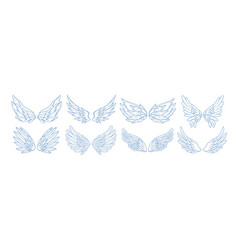 Collection of angel bird or amour feather wings vector