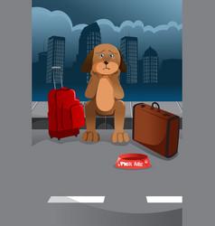 cute sad dog vector image