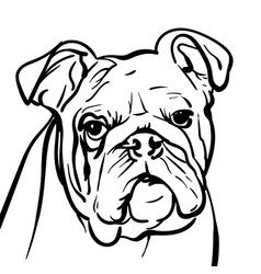 Dog bulldog outlines vector