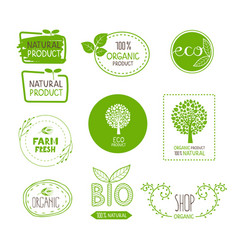 organic bio product natural food vector image