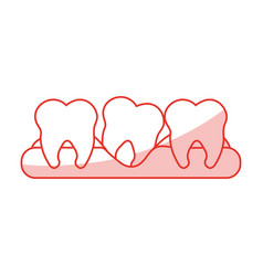 Red shading silhouette cartoon set tooth in gum vector