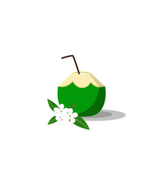 summer drink green coconut on white background vector image