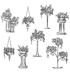 Flower decorations vector image vector image