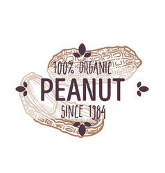 100 percent organic peanut shelled and cracked vector image