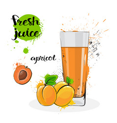 Apricot juice fresh hand drawn watercolor fruits vector