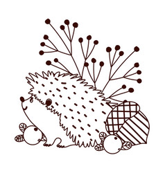 autumn hedgehog acorn berries banches isolated vector image