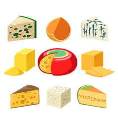 Cheese types and slices vector