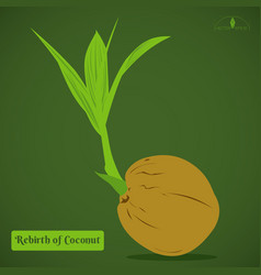 Coconut sprout vector