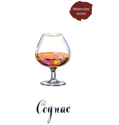 Glass cognac vector