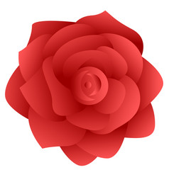 isolated rose flower vector image