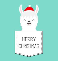 merry christmas llama alpaca sitting vector image