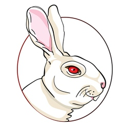 rabbit sign vector image