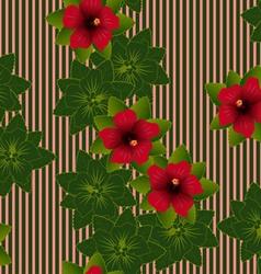Red flower of hibiscus vector