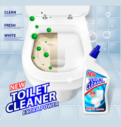 Toilet banner ads effect of cleaner before and vector