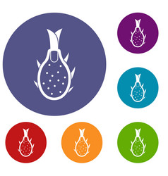 Dragon fruit icons set vector
