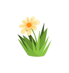 Chamomile Flower Isolated Element Of Forest vector image vector image