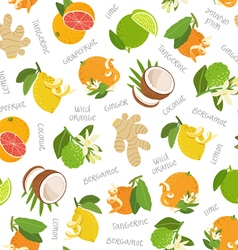 Citrus coconut and ginger seamless pattern vector