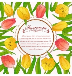 Floral card with tulips on background vector image