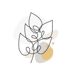 leaf line art vector image