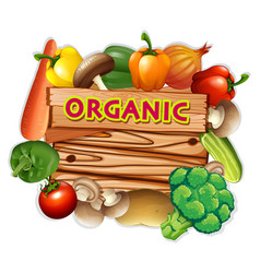 organic sign with fresh vegetables vector image