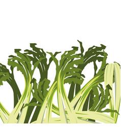 Scallion fresh vegetable white background vector