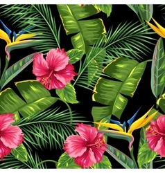 Seamless pattern with tropical leaves and flowers vector image