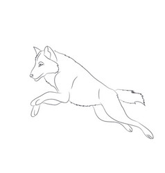Wolf runs image lines vector