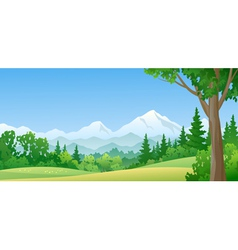 Mountain forest vector image