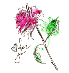 Sketch and watercolor rose vector image vector image