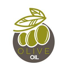 olive oil logo design of vector image