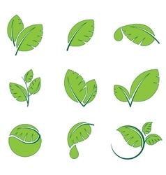 Green leaves leaf symbol icon set vector image