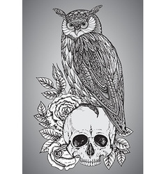 with hand drawn ornate owl on human skull vector image vector image