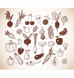 Doodle fruits and vegetables sketch vector