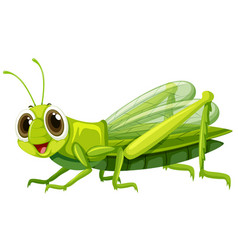 Grasshopper with happy face vector