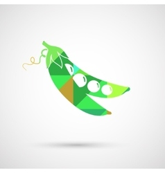 Green pea of fresh green peas pod vector