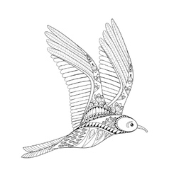 Seagull Zentangle Common Gull vector