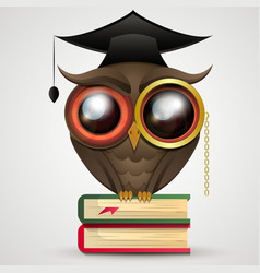 Academic Owl vector image