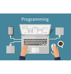 Programming and coding website deveopment web vector image