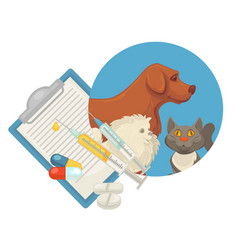 pet vet veterinary doctor animal clinic dog cat vector image