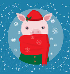 cute pig in a cap and a scarf winter card vector image