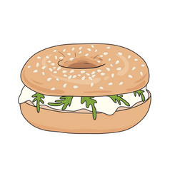 Fresh bagel sandwich with cream cheese and rucola vector