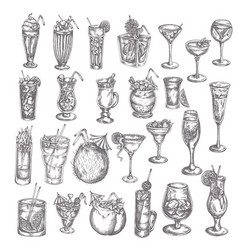 hand drawn cocktail big set sketch alcoholic vector image
