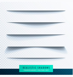 realistic transparent paper shadow effect set vector image