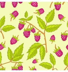Seamless raspberries pattern vector image