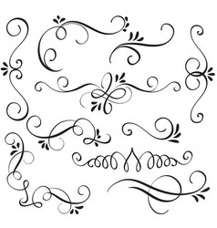 Set of calligraphy flourish art with vintage vector