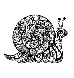 Hand drawn outline snail vector image vector image