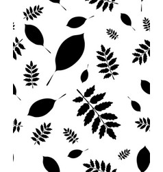 leaves of trees vector image vector image