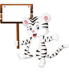 cute white tiger cartoon vector image
