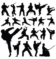 Martial art sports silhouettes vector