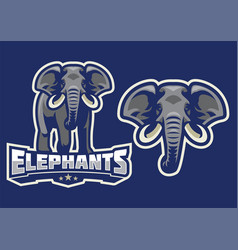 Elephant mascot set vector